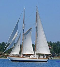 Boats for Sale Cool Boats, Used Boats, Sailboats For Sale, Yacht Builders, Sailing Ships, Sailing Yachts, Sailing Boat, Used Boat For Sale, Wooden Boats