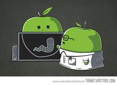 X Ray worm in apple cartoon Cute Puns, Funny Puns, Funny Cartoons, Funny Comics, Hilarious, Funny Images, Funny Pictures, Funny Doodles, Funny Drawings