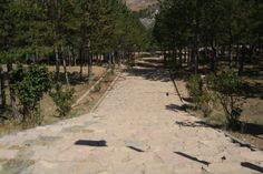 Sol y Naturaleza en Camping Las Cabañas (Teruel).