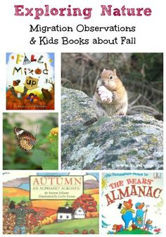 Explore nature in #autumn with these great books and activities for the season! #kidlit