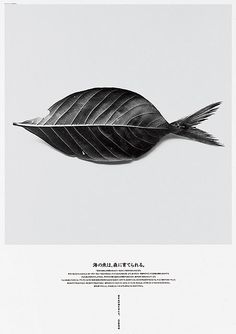 Leaffish   magazine cover | editorial design good use of photography in a creative way
