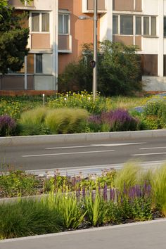 Bioswales in the Mermoz sector of Lyon, France by Gautier+Conquer Architectes. Click image for full profile & visit the slowottawa.ca boards >> http://www.pinterest.com/slowottawa/