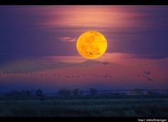 Super Moon around the World! - anj-and-jezzi-the-aries-twins Photo