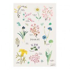 POISSON BULLE Poster Blume Tinou Le Joly Sénoville Bunt 17,85 €
