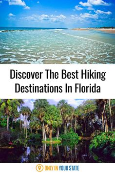 Discover the best trails and places to go hiking in Florida! You'll find beaches, parks, nature preserves, and more on this list with hikes for all skill levels. Hiking Spots, Go Hiking, Hiking Trails, Hiking In Florida, Florida Travel, Hidden Beach, Swimming Holes, Out Of This World, Fishing Boats