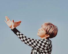 방탄소년단 WALLPAPER : JHope, Jimin, Jungkook x hyyh pt2  (for stay18)