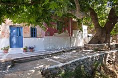 in the shade of Naxian mountains. photography by christos drazoswords by maria alipranti Greek Islands, Greece, Shades, Mountains, Outdoor Decor, Plants, Photography, Gardening, Food