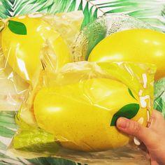 cutiecreative mango squishy kawaii cute shop