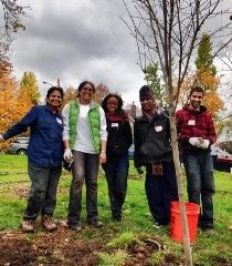 Urban Ecostewards    Get the skills to adopt and care for sites in parks or communities as a long-term Urban EcoSteward volunteer.