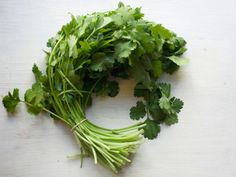 "Cilantro : ""This is my favorite herb, though I know some people hate it,"" said Lisa, who favors the sweet tender stems at the top as well as the leaves. She adds them to pesto, salsa, eggs and enchiladas. ""Always buy fresh,"" she said. ""Dried has no flavor."""