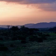 Sunset at Malalane gate by Isabel