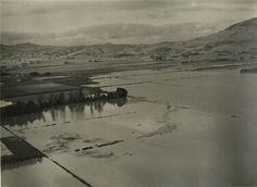 May 1957 - Towards Mosgiel Bush Road, Star 37070