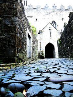 Limerick, Ireland, The origins of my Irish ancestory Limerick Ireland, Clare Ireland, Great Places, Places To See, Images Of Ireland, County Clare, Ireland Homes, Irish Sea, Scotland Uk