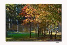 autumn, Kiroli Park, West Monroe, Louisiana - 13 Day Trips in Louisiana