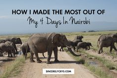 How I Made The Most Out Of My 4 Days In Nairobi - sincerelycrys