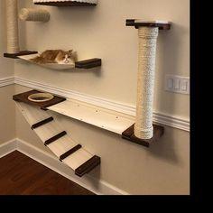 Cat Wall Furniture, Modern Cat Furniture, Diy Cat Tower, Cat Wall Shelves, Cat House Diy, Cat Towers, Cat Hammock, Cat Playground, Cat Room