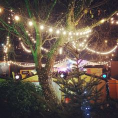 Enter Narnia @southbankcentre Winter Festival!   #southbank #mysouthbank #scwinter #heartofwinter #southbanklondon #love #london #winter #christmas #market #christmasmarkets #instalove #igers #igersoftheday #igerslondon #visitlondon #explore #travel #traveller #wanderlust #christmas2015