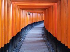 Torii, Fushimi Inari-taisha, Kioto, Japan