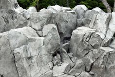 We provide faux rock (carved concrete) training videos and workshops to instruct artists and professionals. Hardscape and natural looking faux stones training is available. Diy Faux Rocks, Koi Pond Design, 3d Wallpaper For Walls, Cement Art, Rock Sculpture, Mountain Pictures, Pond Waterfall, Backyard Water Feature, Nature Color Palette