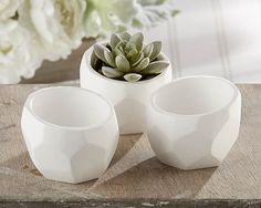 """Modern Garden"" Geometric White Planter (Set of 4). From modern and geometric to shabby chic, mini white plaster planters by Jubilee Favors are a must-have. Create an eye-catching low arrangement of succulents or other small plants. Add candles, beads, flowers, candy__whatever you can dream up for favors or table decor. Features and facts:  Made of white plaster with bezeled bottom Measures 2.15"" h x 3."" w Sold in sets of 4"