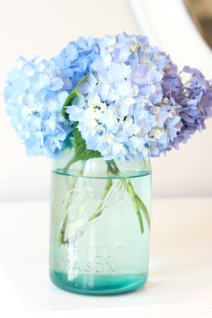 Boiled water method for reviving wilted hydrangeas