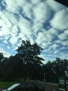 Utrecht cloud