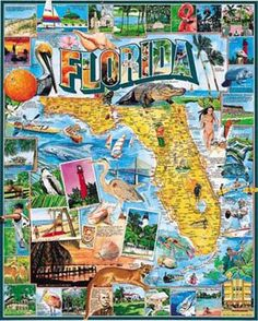 Florida Jigsaw Puzzle - 1000 Pieces
