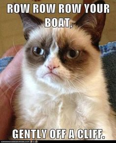 Grumpy cat funny, grumpy cat humor, grumpy cat quotes ...For more hilarious memes and humour visit www.bestfunnyjokes4u.com/lol-best-funny-cartoon-joke-2/: