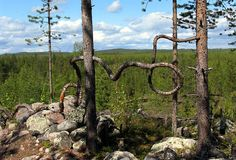 Mysterious spirit of Lapplands wood, Art made by Sauli Miettunen