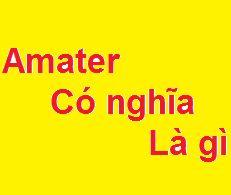 Amater có nghĩa là gì? có hay không?