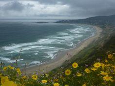 Cachagua, Chile