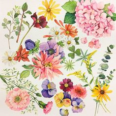 105 Best My Home Garden Images In 2018 Dibujo Drawings