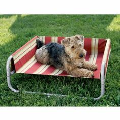 Just what the pup needs for lounging outdoors.