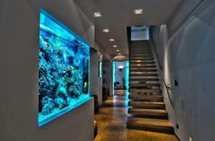 20 of the Coolest Wall Fish Tank Designs | Jackson Dawson ...