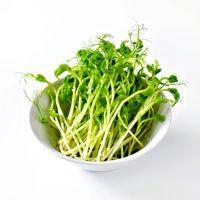 Jak na hráškové výhonky?   ReceptyOnLine.cz - kuchařka, recepty a inspirace Herbs, Herb, Medicinal Plants