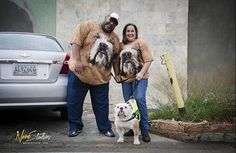 Family bulldog @capobulldogvzla