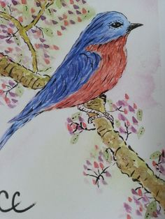 Blue Bird on a Flowering Branch Blank Card by ColorsAndChords