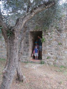 San Gimignano - Balade dans les parcs en famille - Se cacher de la pluie à l'ombre d'un Olivier - Toscane avec les enfants