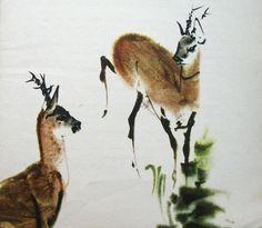 mirko hanak bambi - Google keresés