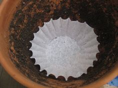 Before you fill your pot with soil, line the bottom with a coffee filter. This will allow excess water to flow through the drainage hole, but keep dirt where it belongs. See more at A Baker's House »