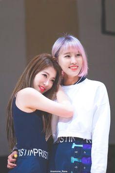 Rena e Yuha Pristin Roa, Pledis Girlz, Face E, Pledis Entertainment, My Everything, Bias Wrecker, Kpop Groups, Kpop Girls, Girl Group
