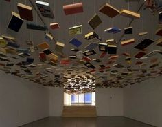 Decorate your library ceiling?