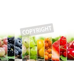 Photo of colorful berry mix with white space for text