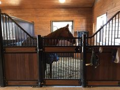 Savannah horse stall - Innovative Equine Systems