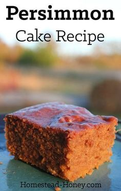 Delicious, moist, and lightly spiced, this persimmon cake recipe will make an amazing brunch addition, or a unique dessert. | Homestead Honey