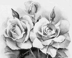 Bitki çizimi (Karakalem) - Hanimefendi.com - Kadın sitesi