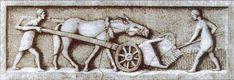 """Znalezione obrazy dla zapytania """"historia rolnictwa"""""""