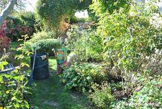 Pour des rosiers en bonne santé et une plus belle floraison - Les Jardins de Malorie