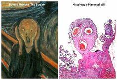 The Pathology Scream
