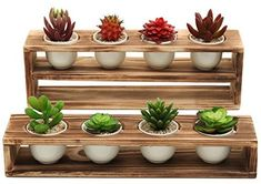 Rustic Tiered Succulent Planter Stand with Ceramic Pots, Set of 2 : Rustic Tiered Succulent Planter Stand with 8 Mini White Ceramic Plant Pots, Set of 2 Tiered Planter, Wooden Planter Boxes, Vertical Planter, Succulent Planter Diy, Planter Pots, Ceramic Plant Pots, Cornhole Set, Paint Colors For Living Room, Potted Plants